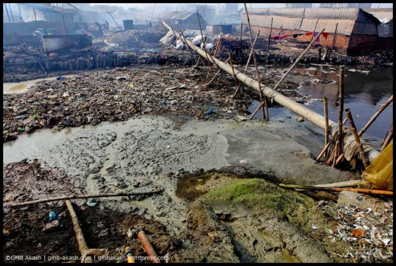 pollution (15)