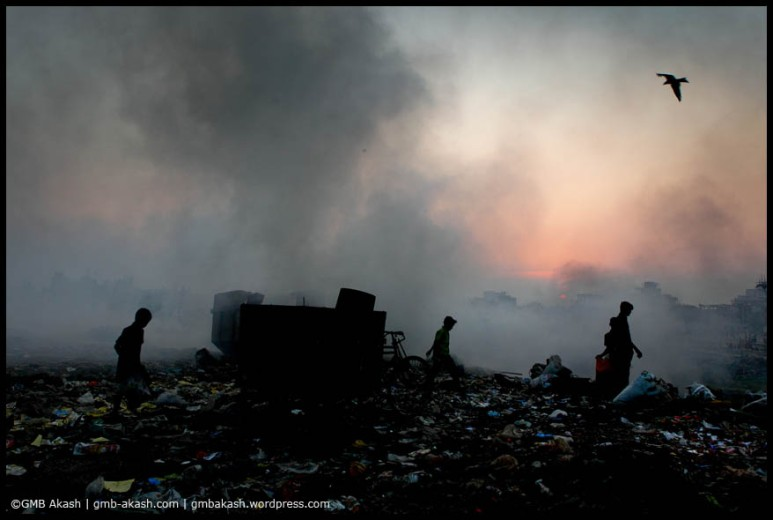 pollution (8)