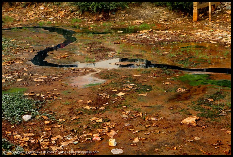 pollution (9)