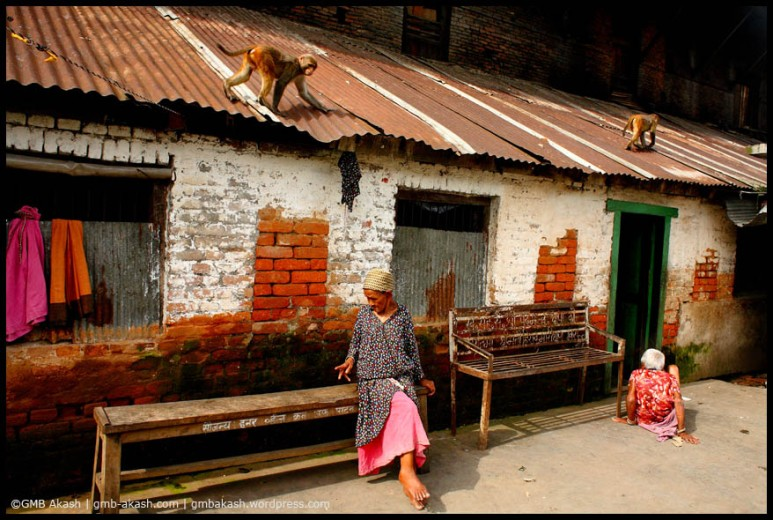 elderly home (15)