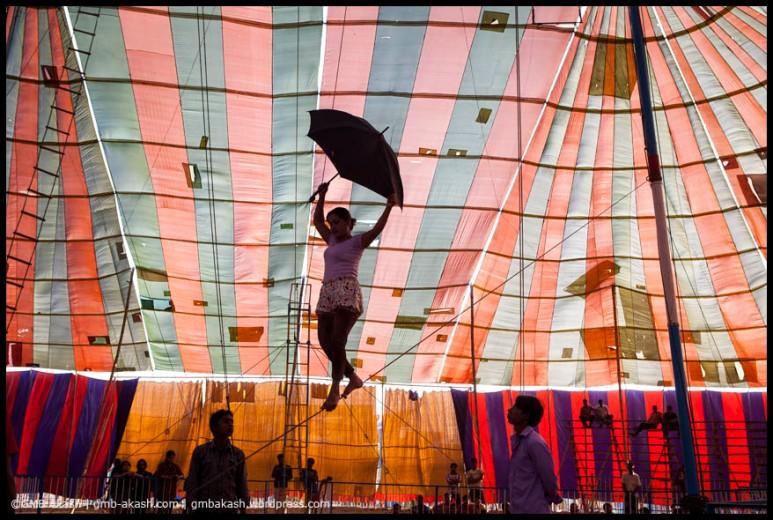 circus (15)