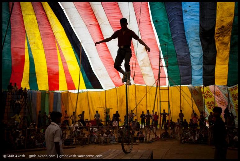 circus (56)