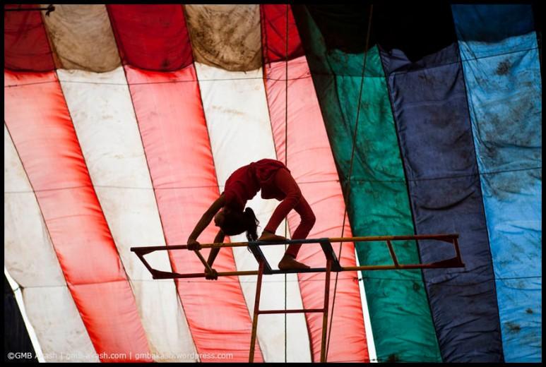 circus (57)