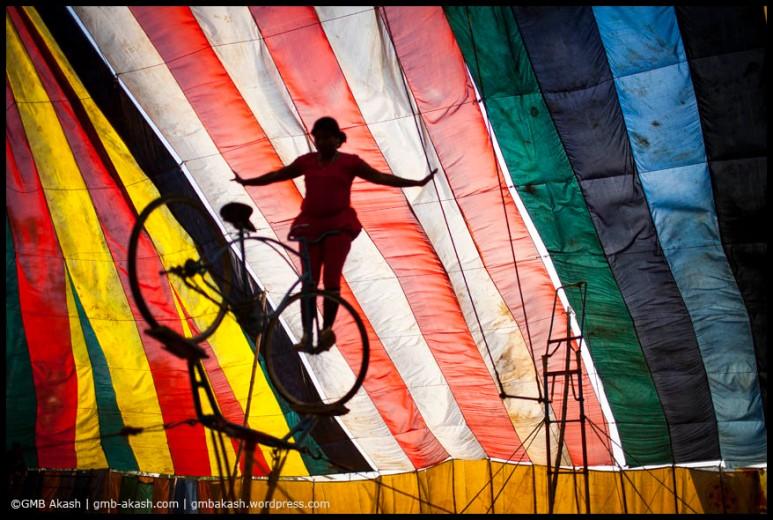 circus (70)