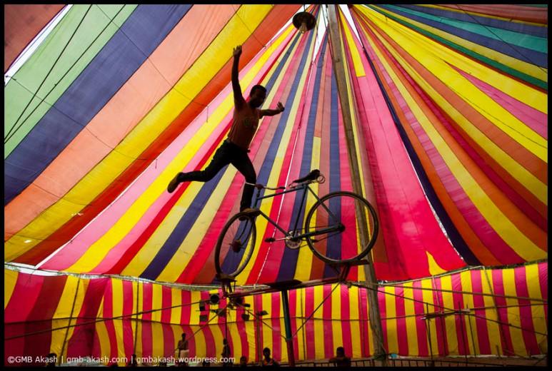circus (84)