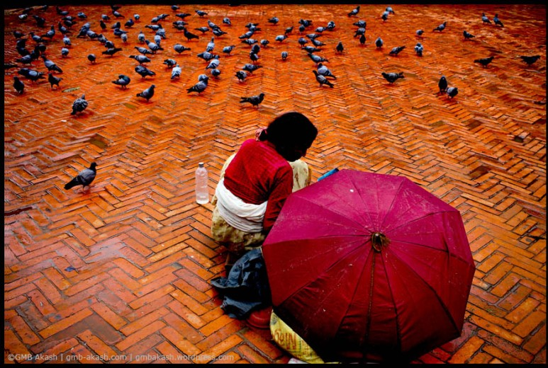 In Patan Darbar squre the woman is feeding pigeons