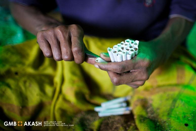 Tobaco fgactory (12)