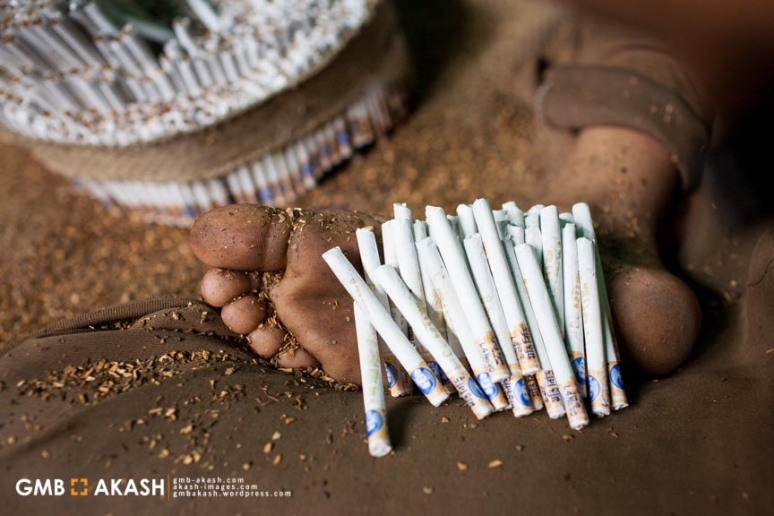 Tobaco fgactory (23)