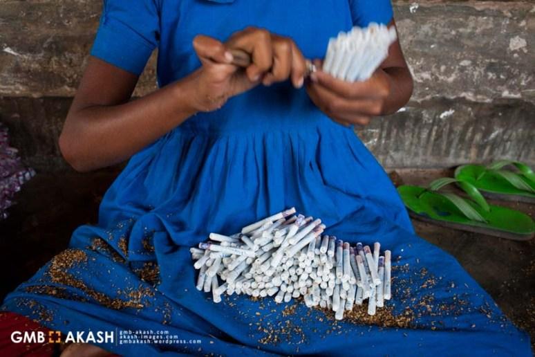 Tobaco fgactory (85)