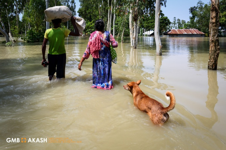 Flood Bangladesh 2019 (100).jpg