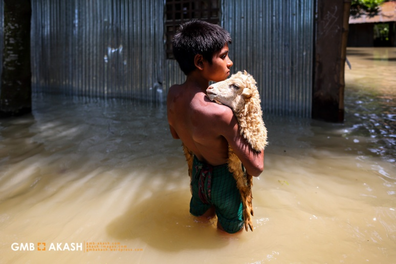 Flood Bangladesh 2019 (98).jpg